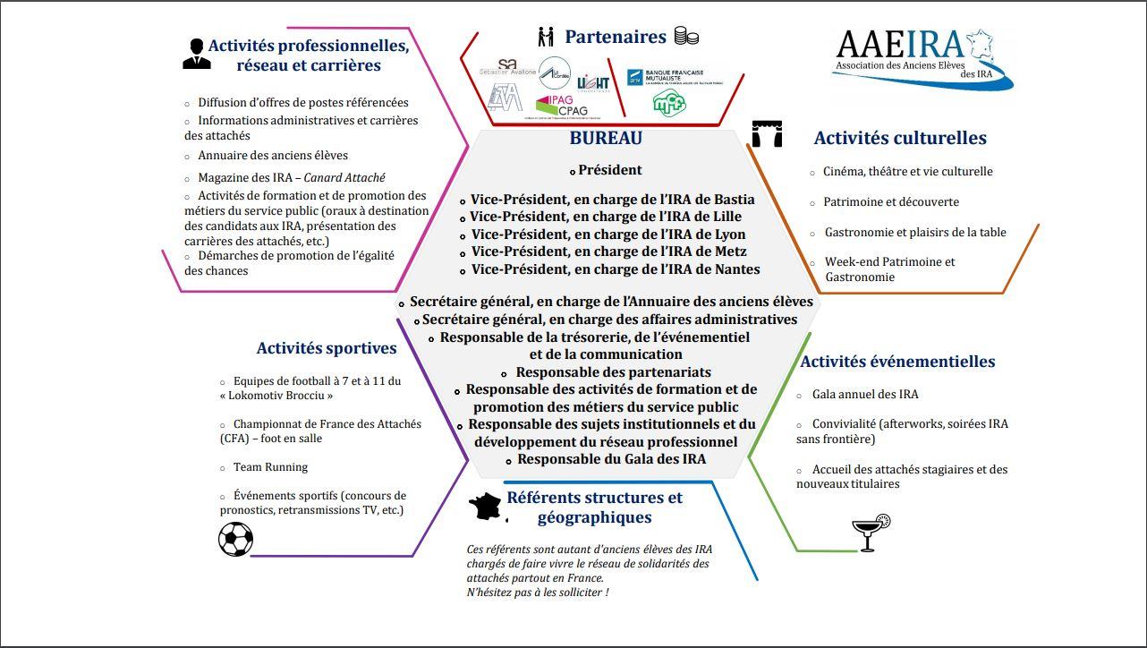 Organigramme de l'Association
